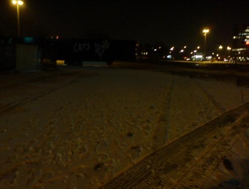 2011-02-16-Langer-Weg